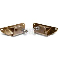 Solid Motor Mounts (84-95 5.0L) - AM Engine 2156883
