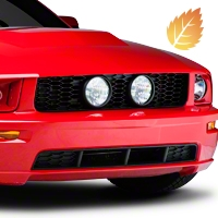 Eleanor Style Honeycomb Grille (05-09 GT) - AM Exterior 215831P1