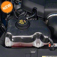 Carbon Fiber Coolant Reservoir Cover (05-14 GT, V6) - AM Exterior TC010-LG111