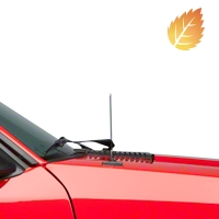 Fixed Chrome Antenna - 8 inch (79-93 All)
