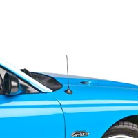Fixed Chrome Antenna - 8 inch (94-04 All)