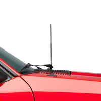 Fixed Black Antenna - 14 inch (79-93 All)