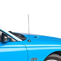 Fixed Chrome Antenna - 14 inch (94-04 All)